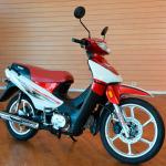 DX 110CC-4